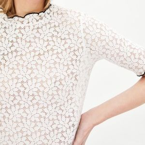 Zara Lace Tee with Piping - NWT